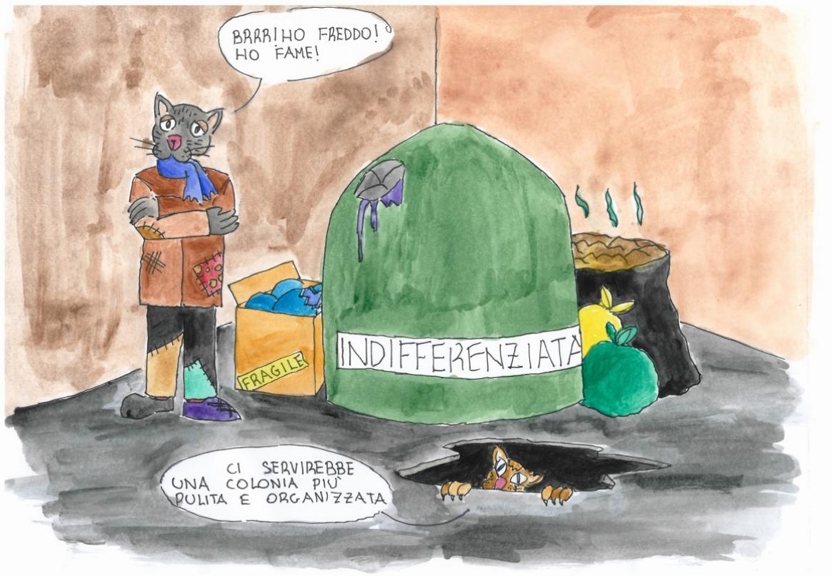 Colonie Feline: Stato Attuale
