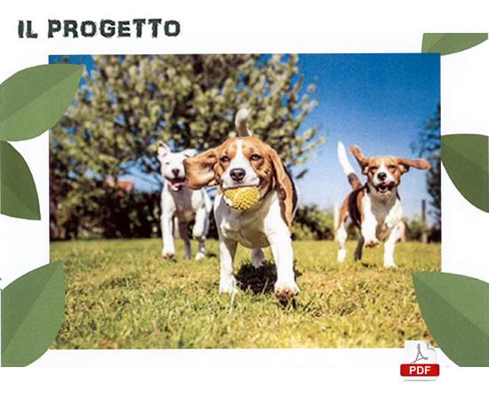 DogPark_progetto02